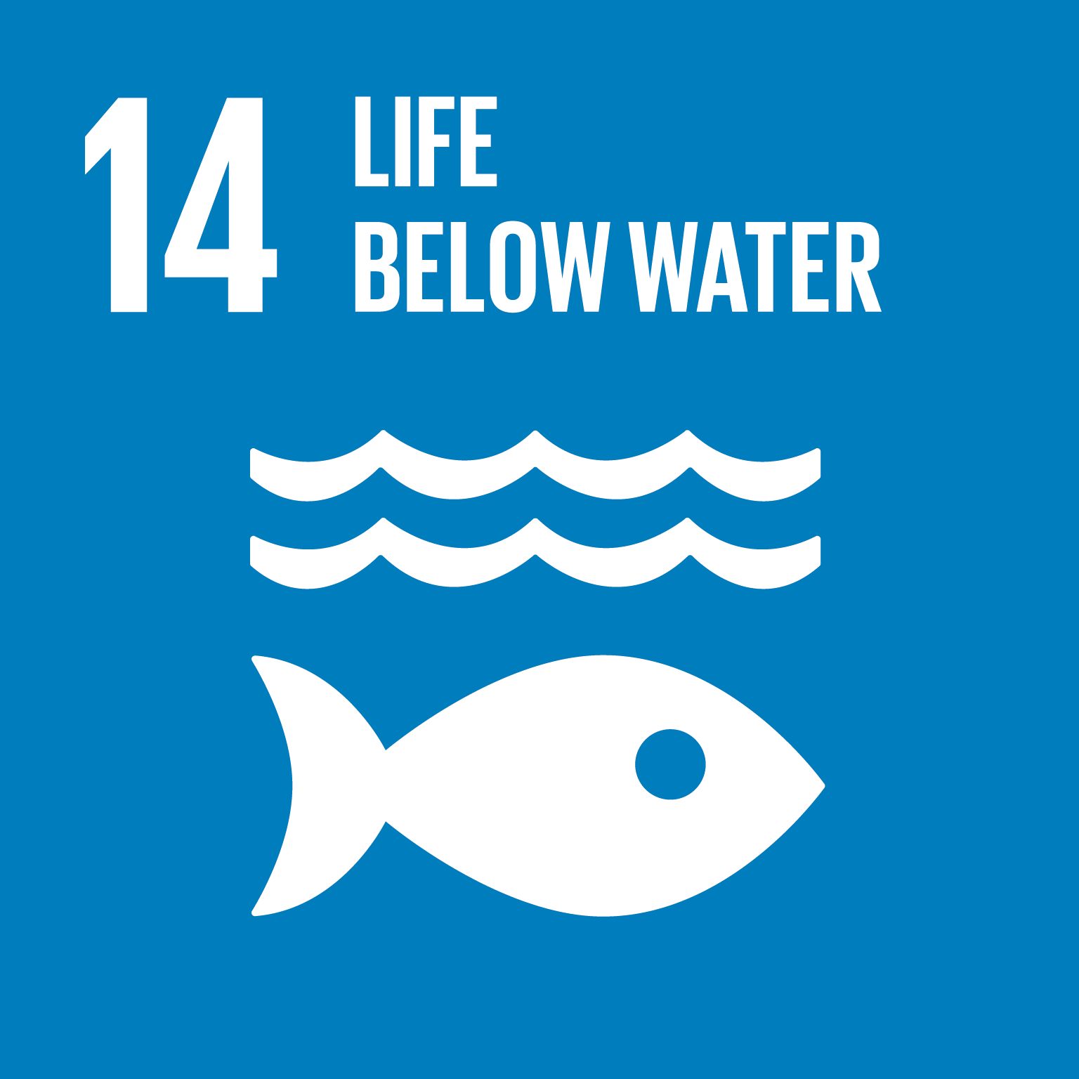 Sustainable Development Goals logo 1