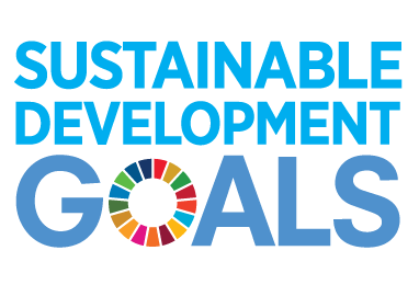 Sustainable Development Goals logo 2